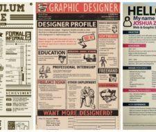 Ejemplos de curriculums