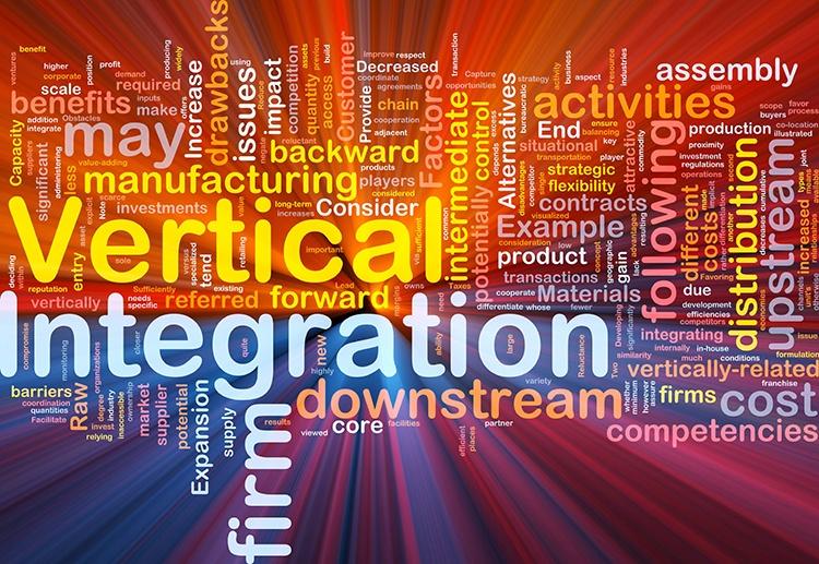 integracion-vertical-nube-de-palabras