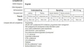 Cómo hacer un buen curriculum en inglés
