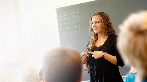 sueldo profesor