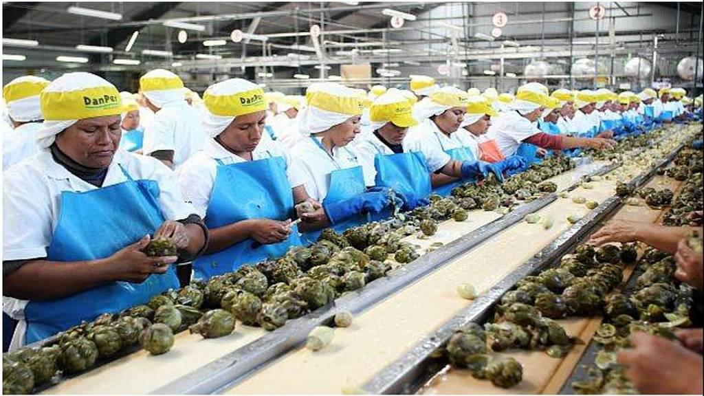 actividad-economica-cadena-de-trabajo