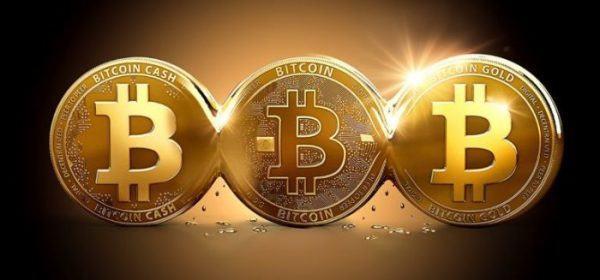 Riesgos y precauciones a tomar en cuenta a la hora de hacer trading con Bitcoin Evolution