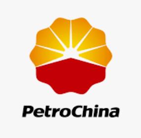petrochina gasolina
